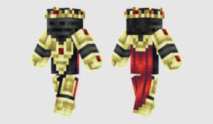 wither-king-skin 12
