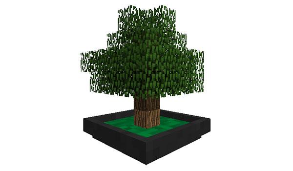 Bonsai Trees Mod 1 15 2 1 14 4 1 12 2 Mtmods Com
